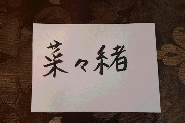タレント菜々緒さん姓名判断結果~ドSは本物?