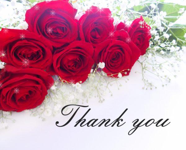 赤 兩椛の占い部屋・サイト(ブログ)運営2周年を迎えました!
