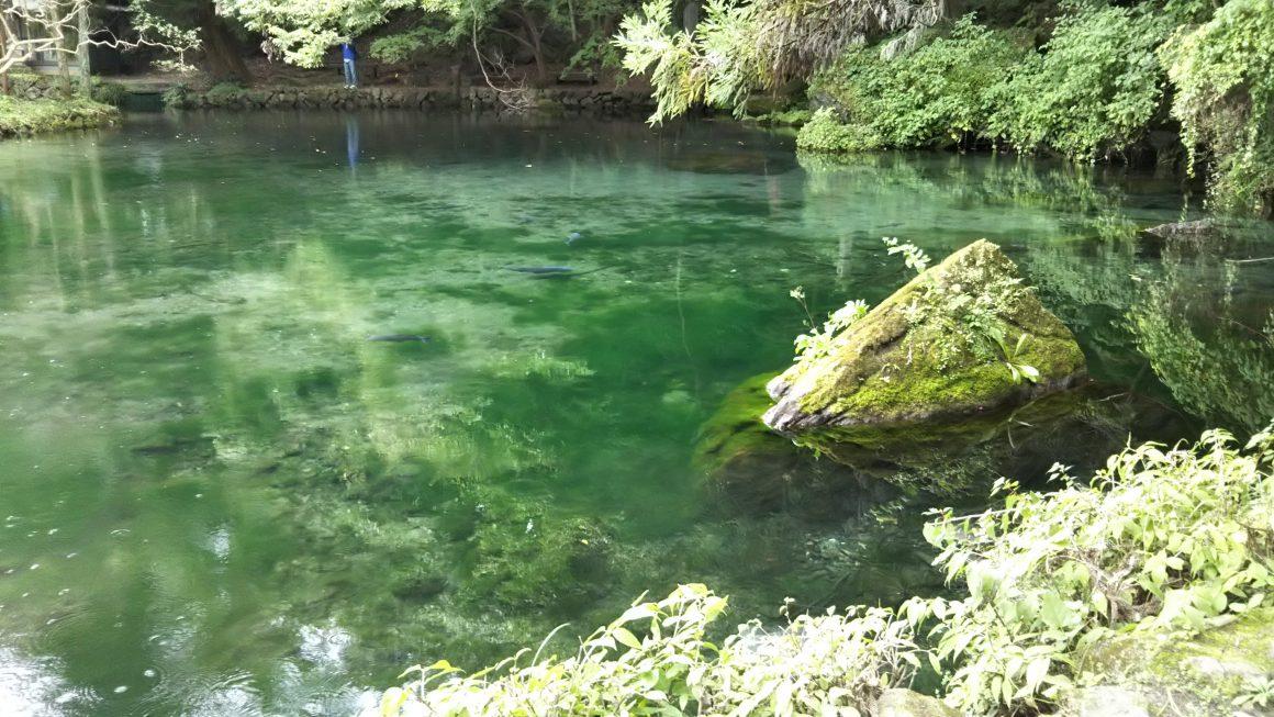 栃木県のパワースポットに行ってきました!出流原弁天池・名草巨石群